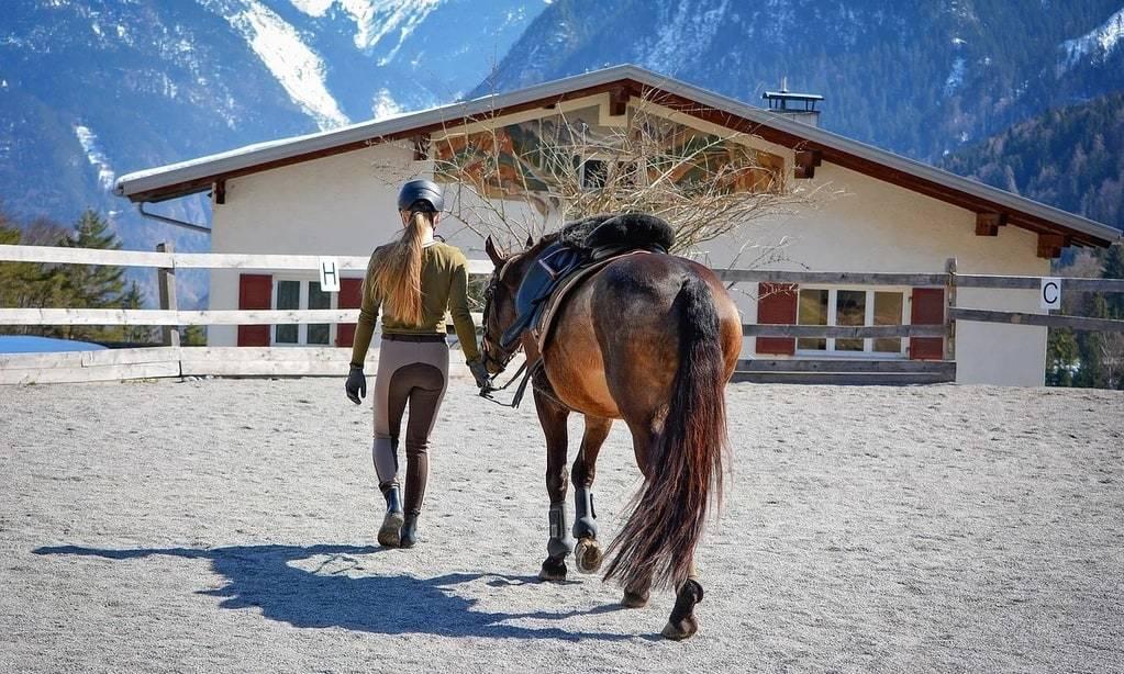 Comment choisir la couverture de son cheval ?